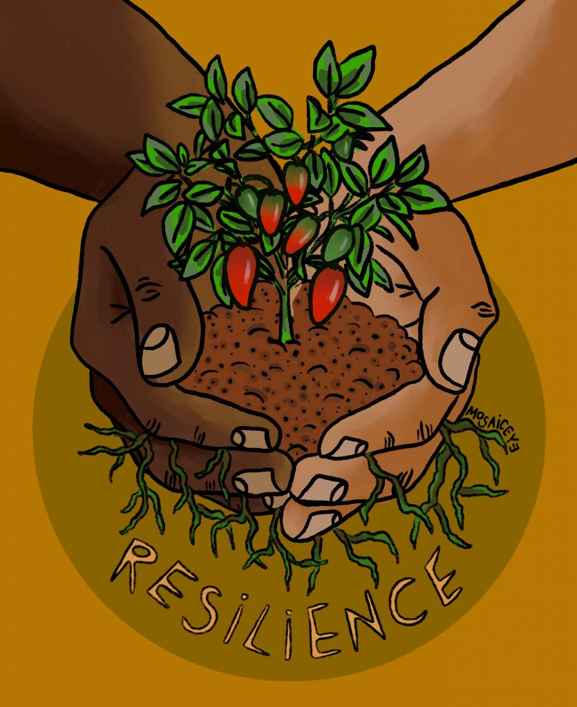 """Artwork with words """"resilience."""" Image of hands holding a growing chile plant with roots and a yellow background."""